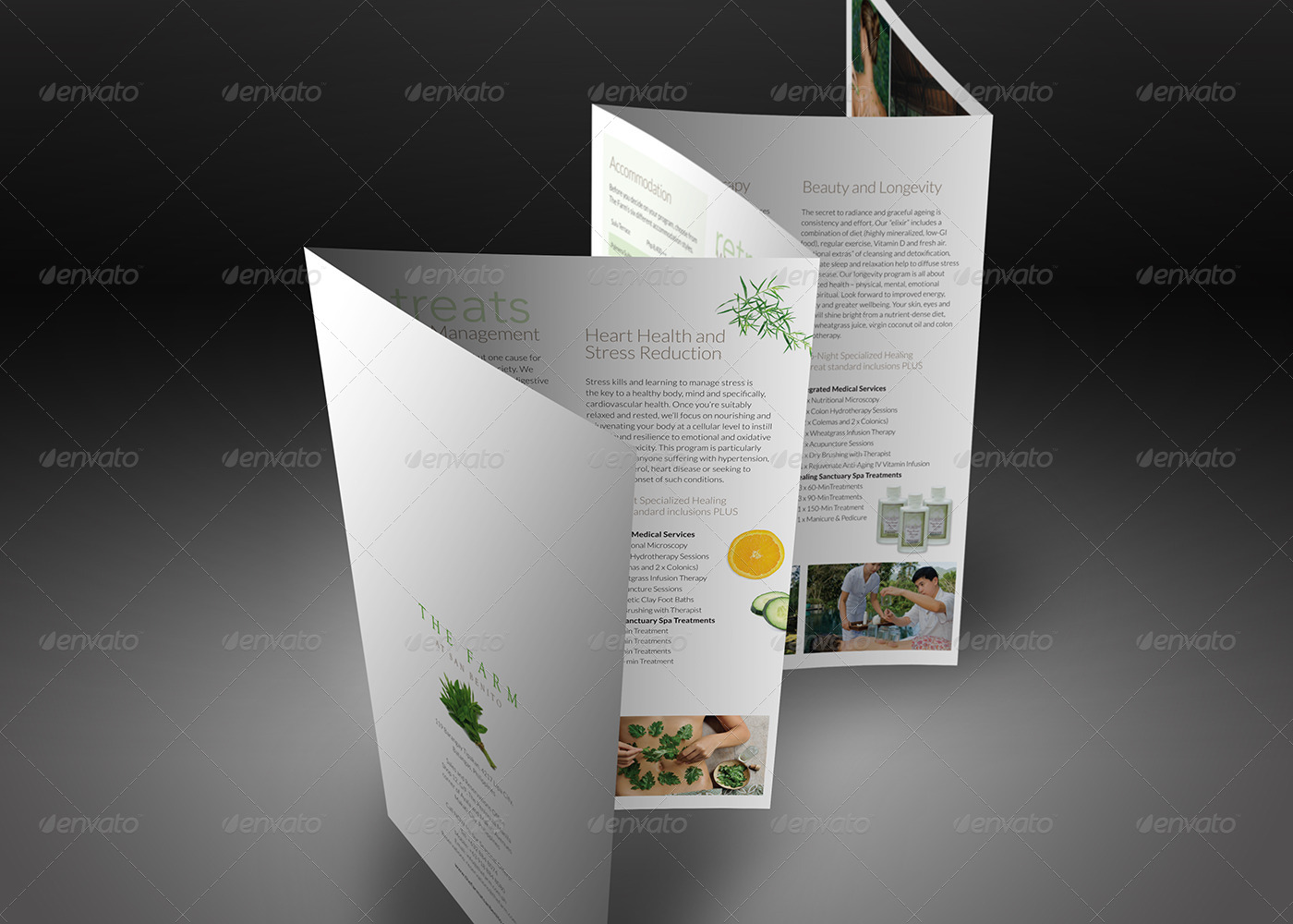 elegant accordion style brochure mock up by ina717