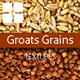 Groats Grains Surface Textures
