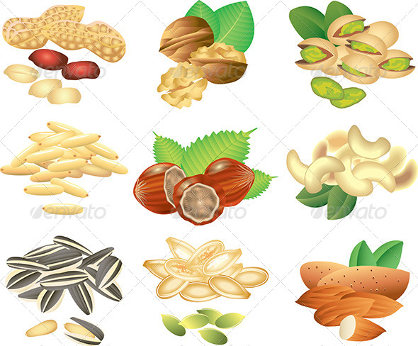GraphicRiver Nuts and Seeds Vector Set 5460091
