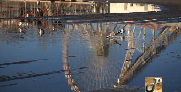VideoHive Reflection Amusement Park 5477029