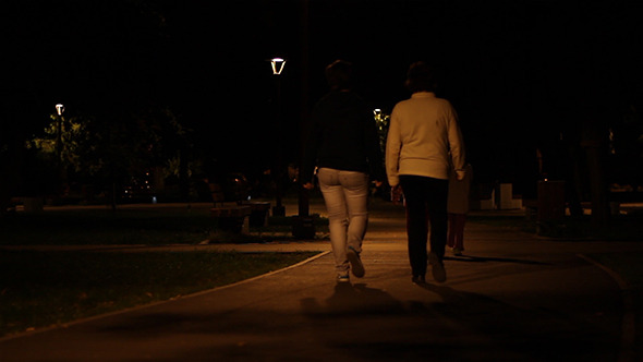 VideoHive Nighttime Park Promenade 5477417