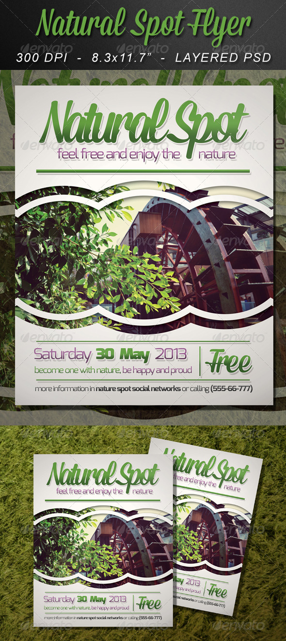 GraphicRiver Natural Spot Flyer Template 5482833