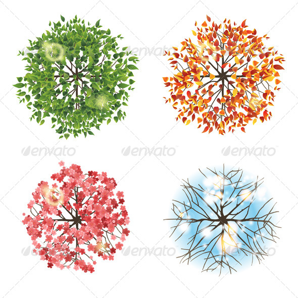 GraphicRiver Tree Icon in Four Different Seasons From Top View 5487793