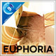 Euphoria Boxed Slides - VideoHive Item for Sale