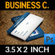 Appointment Business Card Vol.2 - GraphicRiver Item for Sale