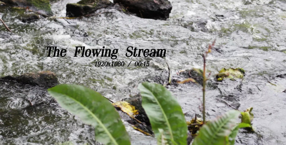 VideoHive The Flowing Stream 5 5492327