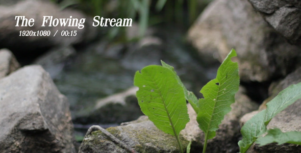 VideoHive The Flowing Stream 8 5493106