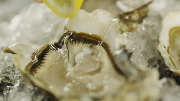 VideoHive Squeezing Lemon Juice Onto Prepared Oysters 5493178