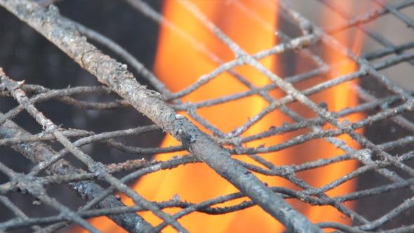 VideoHive Barbecue Grill 5496923