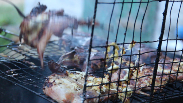 VideoHive Quails On Grill 7 5496988