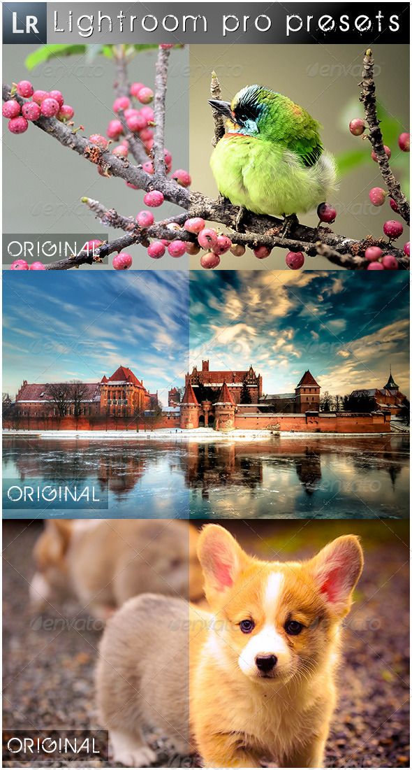 GraphicRiver 43 Mixed Pro Presets 5503449
