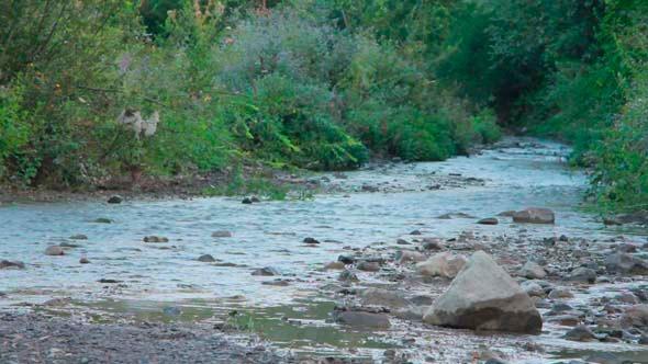 VideoHive Small Mountain River 2 5503963