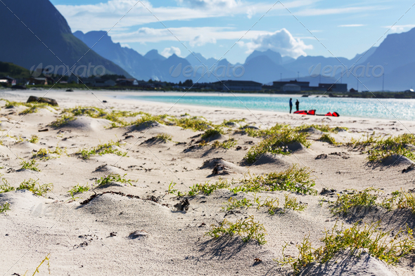 Beach on Lofoten - Stock Photo - Images