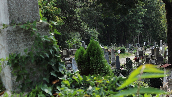 VideoHive Graves in Cemetery View 5504234