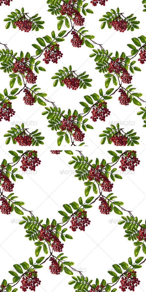 GraphicRiver Ashberry Rhombic Branch Seamless Pattern 5515579