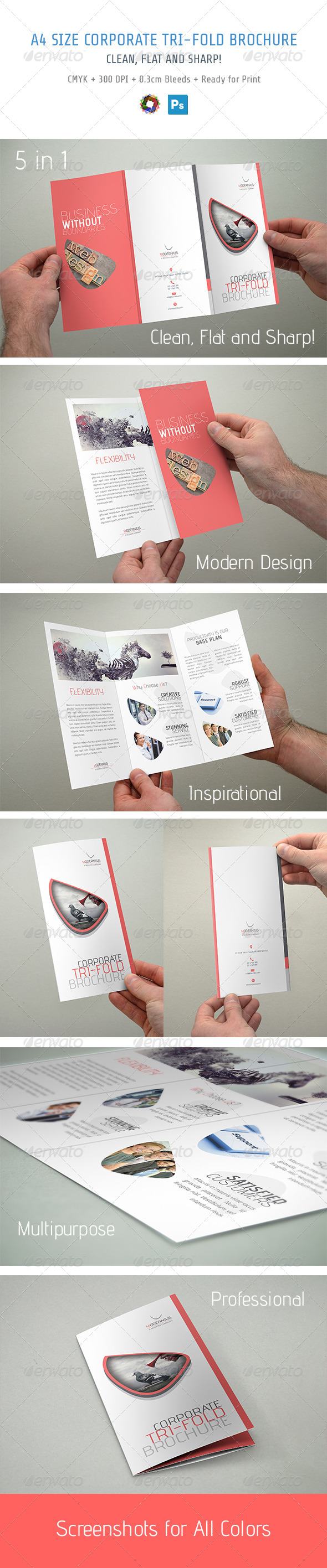 GraphicRiver Trifold Brochure 5517407