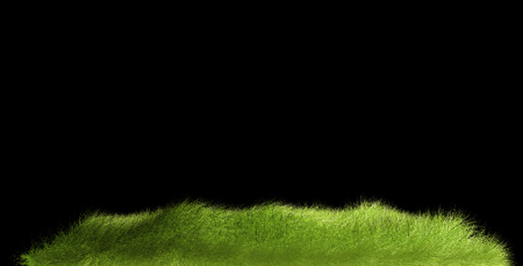 VideoHive Realistic Grass Alpha V2 5517983