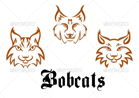 GraphicRiver Bobcats and Lynxs 5520641