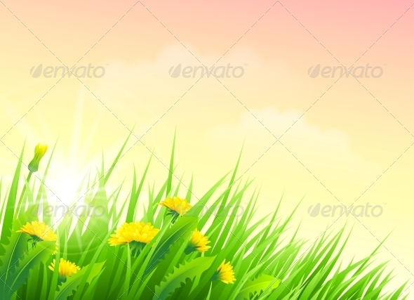 GraphicRiver Field of Spring Flowers 5522351