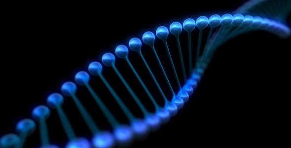 DNA Animation Loop