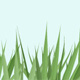 Growing grass - ActiveDen Item for Sale