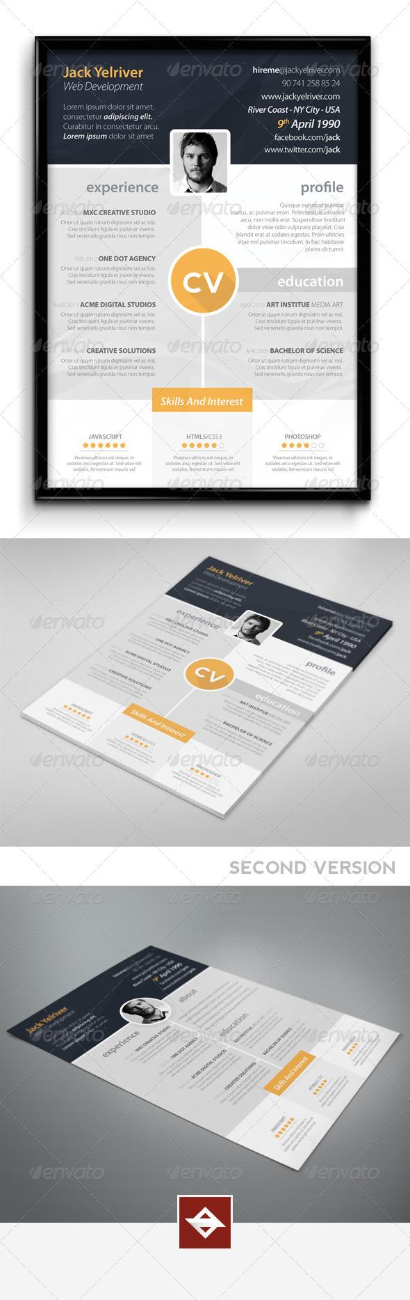 GraphicRiver Premium CV 5525344