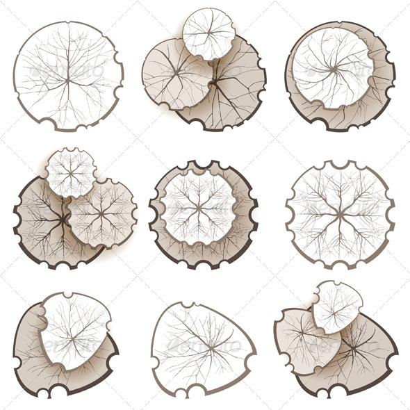 GraphicRiver Trees Top View 5528657