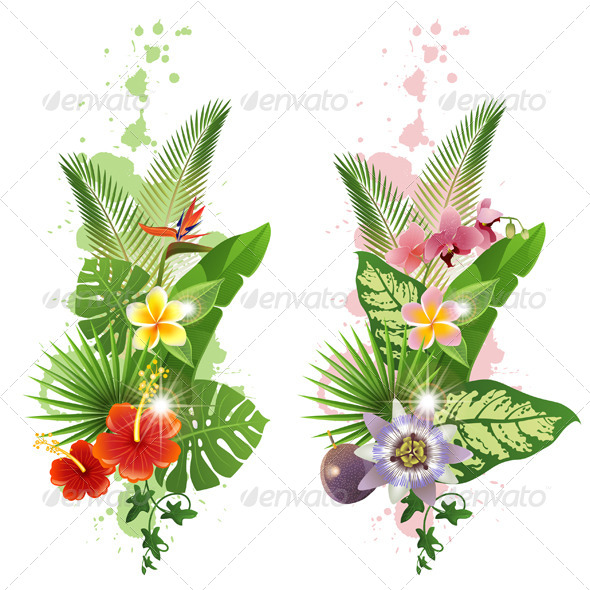 GraphicRiver Tropical Plants 5528703
