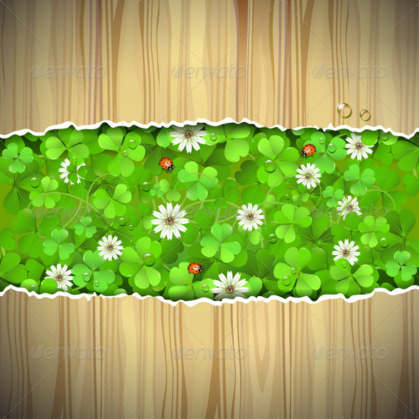 GraphicRiver Background with Clover 5529957