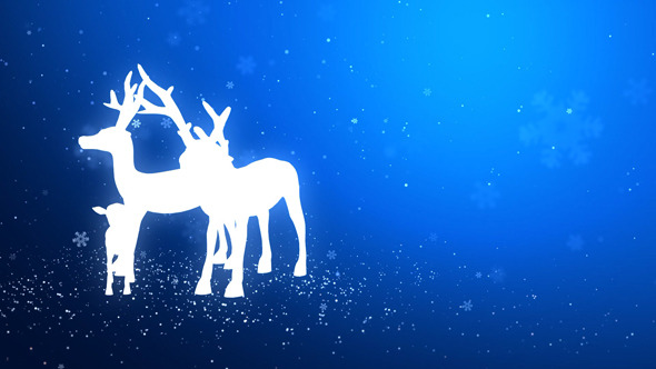 VideoHive Reindeer Standing in the Snow 5531451