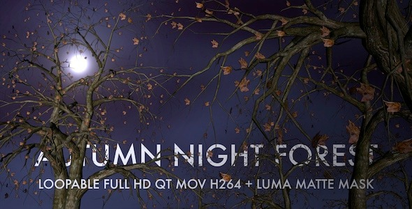 VideoHive Autumn Night Forest 3D Loop 5534729