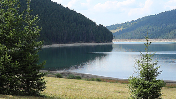 VideoHive Water Dam Lake and Forest 5541812