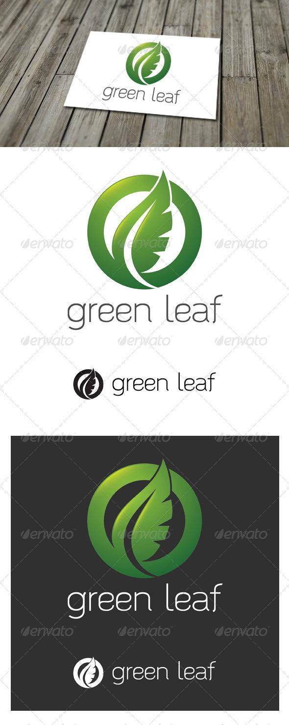 GraphicRiver Green Leaf Logo 5503365