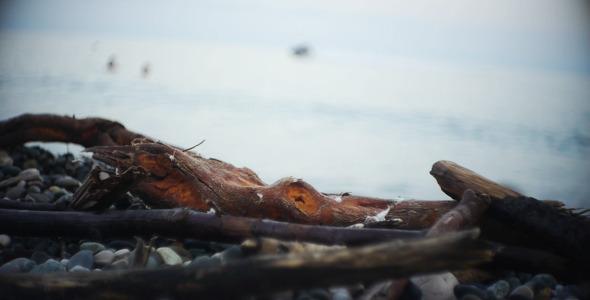 VideoHive Seashore 1 5544623