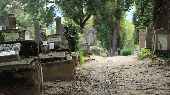VideoHive Old Cemetery Alley 5544750