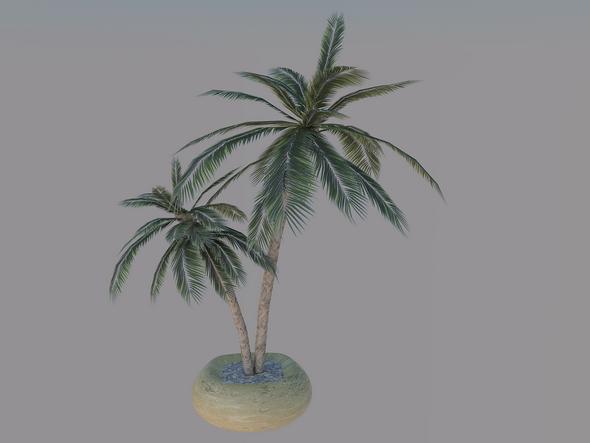 3DOcean Palm Model 5545300