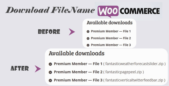 Download File Name for WooCommerce - CodeCanyon Item for Sale