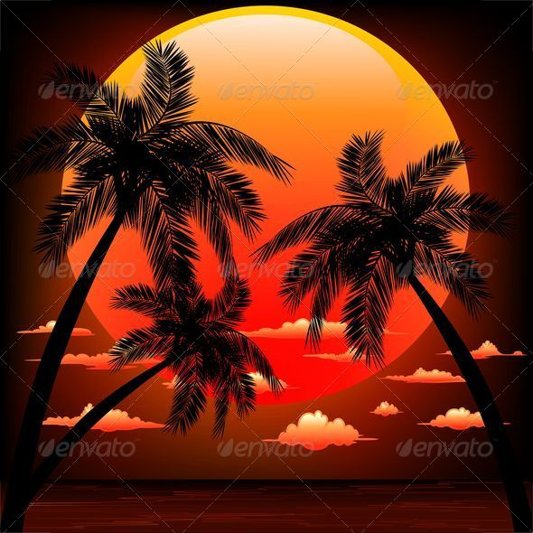 Warm Topical Sunset with Palm Trees - Travel Conceptual