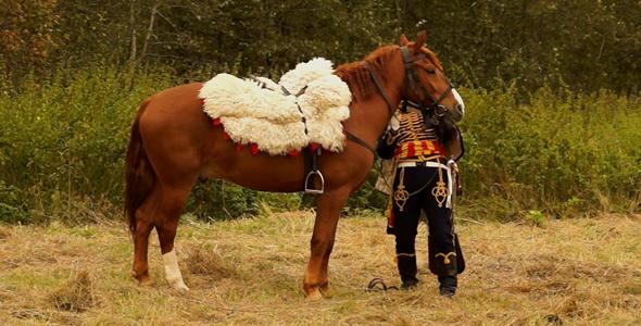 VideoHive Gusar Prepares A Horse 5554432