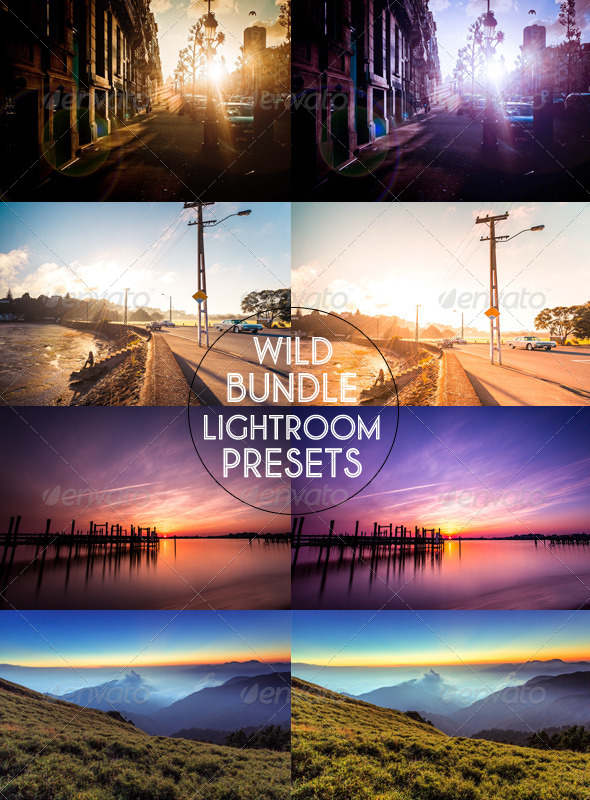 GraphicRiver Wild Bundle Lightoom Presets 5556189
