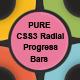 PURE CSS3 Radial Animated Progress Bars - CodeCanyon Item for Sale