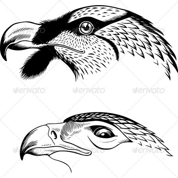 GraphicRiver Eagle s Heads 5565902