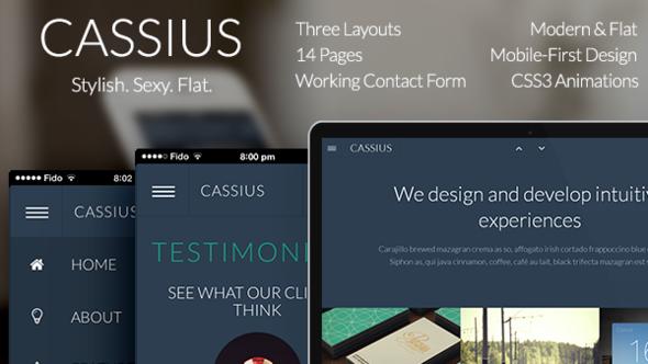 ThemeForest Cassius Modern & Flat Multi-Purpose Theme 5566091