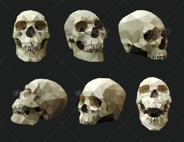 GraphicRiver Set of Human Skulls 5568312
