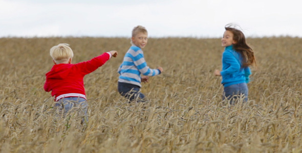 VideoHive Kids in the Fields 5574963