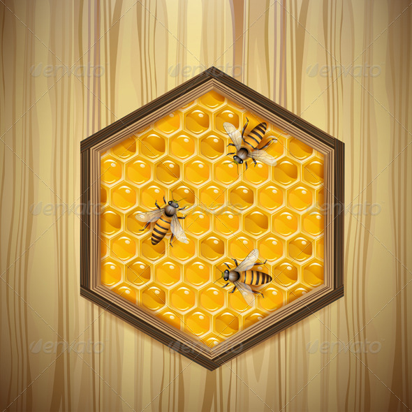 GraphicRiver Bees and Honeycombs 5577485