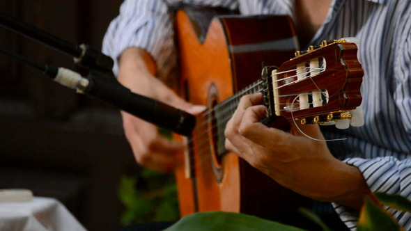 Flamenco Guitar in Action Close Up