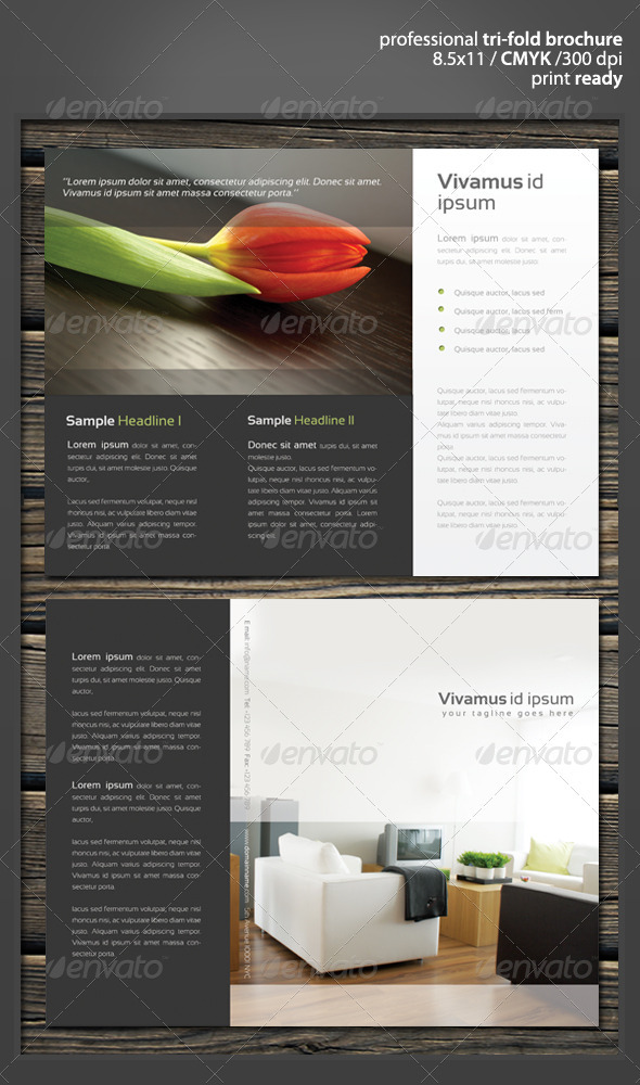 Quad fold professional elegant brochure for Quad fold brochure template