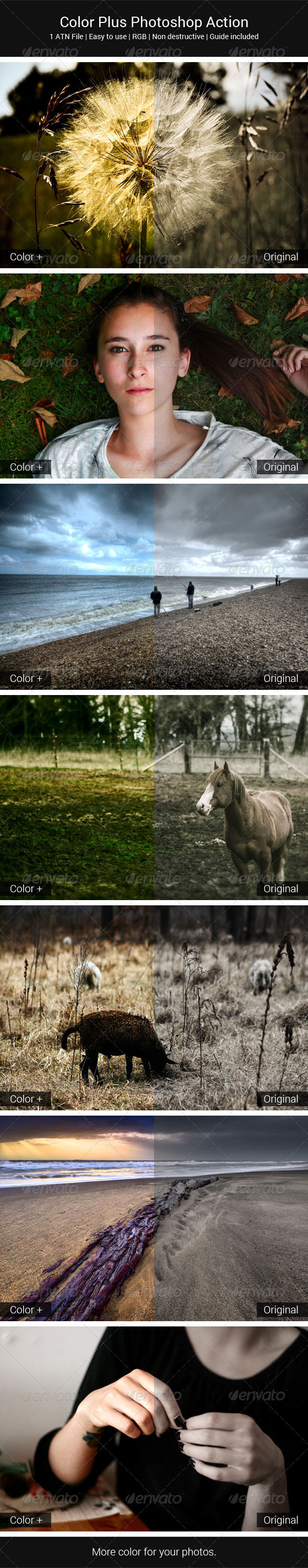 GraphicRiver Color Plus Photoshop Action 5591553