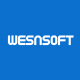 wesnsoft